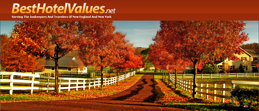 BestHotelValues.net